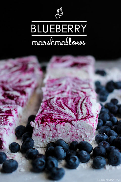 BlueberryMarshmallows-ClubNarwhal