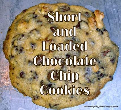 Short-Loaded-Chocolate-Chip