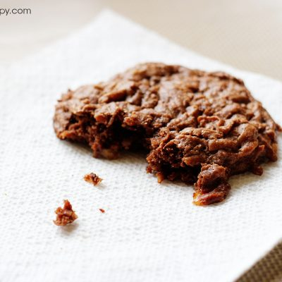 Chocolate Coconut Crisps